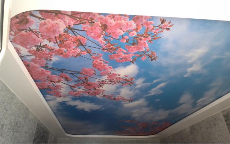 Натяжной Потолок ПВХ Фотопечать для Спальни
